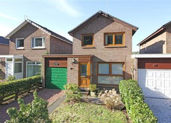 Thumbnail 3 bed terraced house for sale in Daykins Drive, Hawick