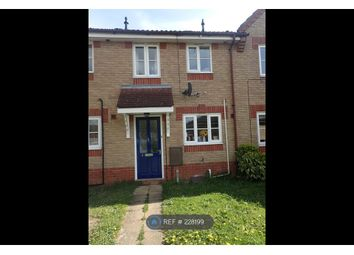 Thumbnail 2 bed terraced house to rent in Gentian Way, Attleborough