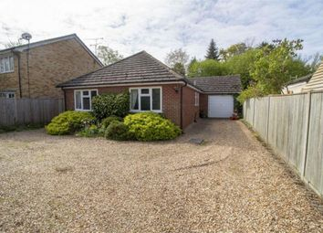 Thumbnail 2 bedroom detached bungalow to rent in Aldershot Road, Fleet