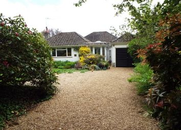 Thumbnail 3 bed bungalow to rent in Honey Lane, Burley, Ringwood