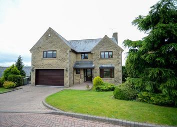 Thumbnail 5 bedroom detached house for sale in High Lane, Ridgeway, Sheffield