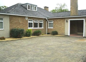Thumbnail 4 bed bungalow to rent in Dunchurch Road, Rugby, Warwickshire