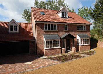 Thumbnail 6 bedroom detached house for sale in Chestnuts, Elton Park, Hadleigh Road, Ipswich