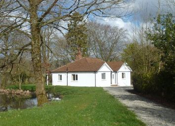 Thumbnail 4 bed bungalow to rent in Cranbrook Road, Benenden, Kent