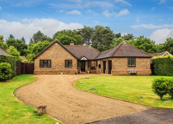 Thumbnail 3 bed detached bungalow for sale in Becket Wood, Newdigate, Dorking