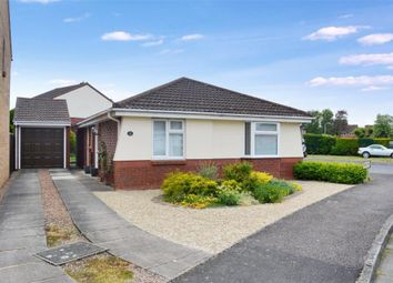 Thumbnail 3 bed detached bungalow for sale in Marden Grove, Taunton, Somerset