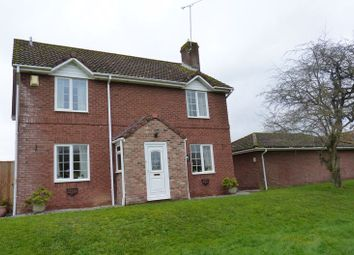 Thumbnail 4 bed detached house for sale in Reed Walk, Durrington, Salisbury