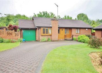 Thumbnail 3 bed bungalow for sale in Lundwood Close, Owlthorpe, Sheffield