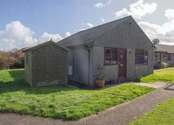Thumbnail 2 bed bungalow to rent in Carbis Bay Holiday Park, Carbis Bay