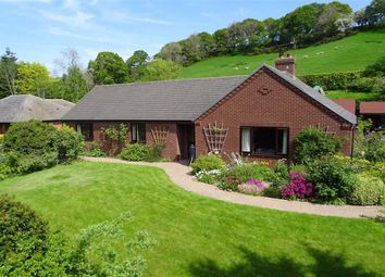 Thumbnail 3 bedroom bungalow for sale in Bronhaul, Llandyssil, Montgomery, Powys