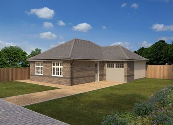 "Thumbnail 2 bed bungalow for sale in ""Hadleigh"" at Crediton Road, Okehampton"