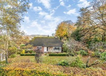 Thumbnail 3 bed bungalow for sale in The Croft, Lodsworth, Petworth, West Sussex
