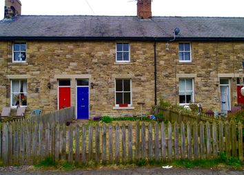 Thumbnail 2 bedroom cottage to rent in Station Cottages, Whittingham, Alnwick