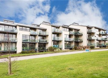 Thumbnail 2 bed apartment for sale in 33 The Kittiwake, Skerries, County Dublin