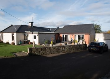 Thumbnail 4 bedroom detached house for sale in Invergowrie, Dundee