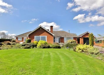 Thumbnail 3 bed bungalow to rent in Upper Reddening End, Much Marcle, Ledbury, Herefordshire