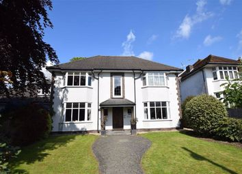 Thumbnail 2 bed flat for sale in 144 Falcondale Road, Westbury-On-Trym, Bristol