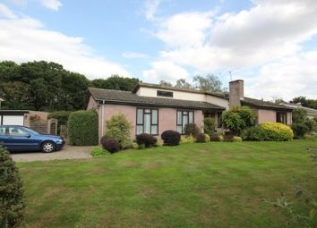 Thumbnail 4 bed detached bungalow for sale in The Ryefield, Little Baddow, Chelmsford