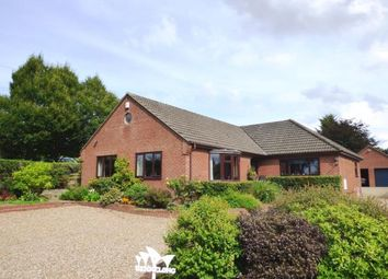 Thumbnail 4 bed bungalow for sale in Swardeston, Norfolk