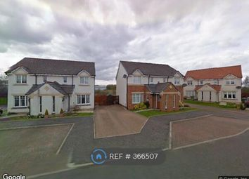 Thumbnail 3 bed semi-detached house to rent in Macdonald Crt, Larbert