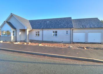 Thumbnail 4 bedroom detached bungalow for sale in Old Aberdeen Road, Fordoun, Laurencekirk