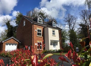 Thumbnail 5 bed detached house for sale in Maes Helyg, Vicarage Road, Llangollen
