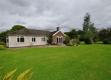 Thumbnail 3 bed detached bungalow to rent in Lower Interfields, Malvern