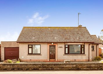 Thumbnail 2 bed bungalow for sale in Rosehill Road, Montrose