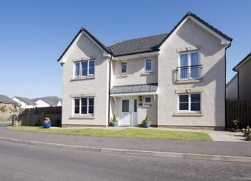 Thumbnail 4 bed detached house for sale in Eagle Avenue, Hunters Meadow, Auchterarder