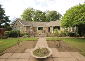 Thumbnail 3 bed detached bungalow for sale in Main Road, Old Brampton, Chesterfield