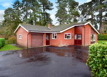 Thumbnail 2 bed detached bungalow to rent in Kingswood Road, Kington
