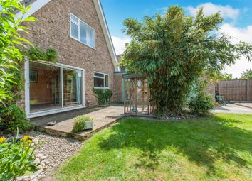 Thumbnail 3 bed property for sale in Malsters Close, Mundford, Thetford