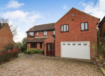 Thumbnail 5 bed detached house to rent in Caernarfon Close, Swanwick, Alfreton