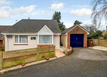 Thumbnail 2 bed detached bungalow for sale in Hobbs Way, Bow, Crediton, Devon