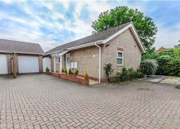 Thumbnail 3 bed detached bungalow for sale in Sunmead Walk, Cherry Hinton, Cambridge