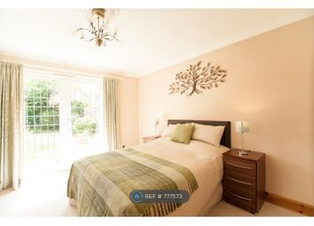 Thumbnail Room to rent in Holywell Road, Watford
