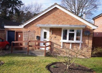 Thumbnail 3 bed detached bungalow for sale in Wellington Avenue, Whitehill