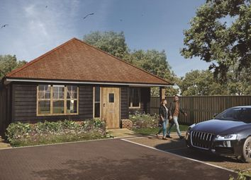 Thumbnail 2 bed bungalow for sale in Dover Road, Ringwould, Deal, Kent