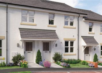 "Thumbnail 3 bedroom mews house for sale in ""Glen"" at Mayfield Boulevard, East Kilbride, Glasgow"