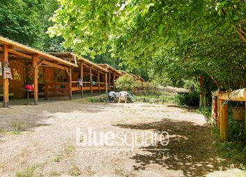 Thumbnail 2 bed equestrian property for sale in Cipieres, Alpes-Maritimes, 06620, France