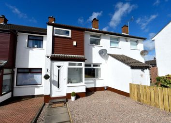 Thumbnail 3 bed terraced house for sale in Glendhu Grove, Belmont, Belfast