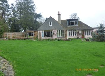 Thumbnail 4 bed bungalow to rent in Green Lane, Exton, Exeter