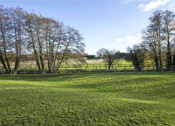 Oakhanger Farm, Oakhanger, Hampshire GU35. 7 bed equestrian property for sale