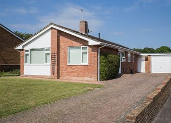 Thumbnail 3 bed detached bungalow to rent in Lexden Road, Seaford