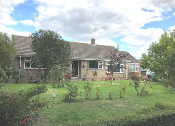 Thumbnail 4 bed detached bungalow for sale in Church Lane, Southery, Downham Market