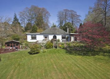 Thumbnail 4 bed detached bungalow for sale in Carncroft, Kinnaird, Pitlochry