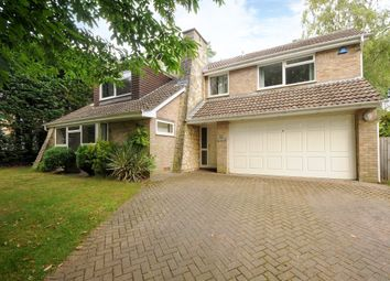 Thumbnail 4 bed detached house to rent in Lime Avenue, Camberley