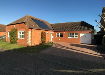 Thumbnail 4 bedroom detached bungalow to rent in Townsend Way, Folksworth, Peterborough, Cambridgeshire