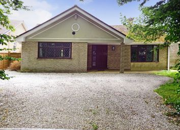 Thumbnail 3 bed bungalow to rent in Tehidy Gardens, Camborne