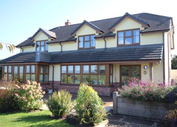 Thumbnail 4 bed detached house for sale in Ashreigney, Chulmleigh